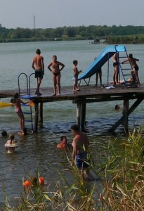 Vojvodina Serbia Lake Wild-rooster.com