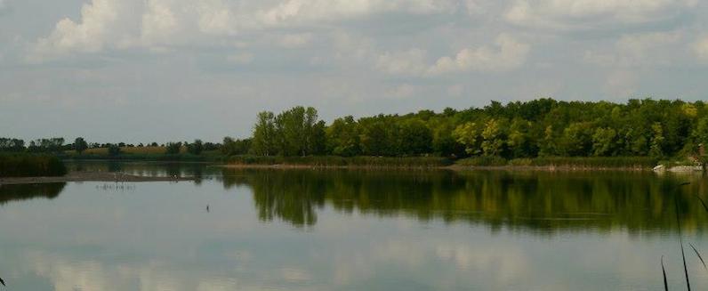 Lake Serbia Vojvodina wild-rooster.com